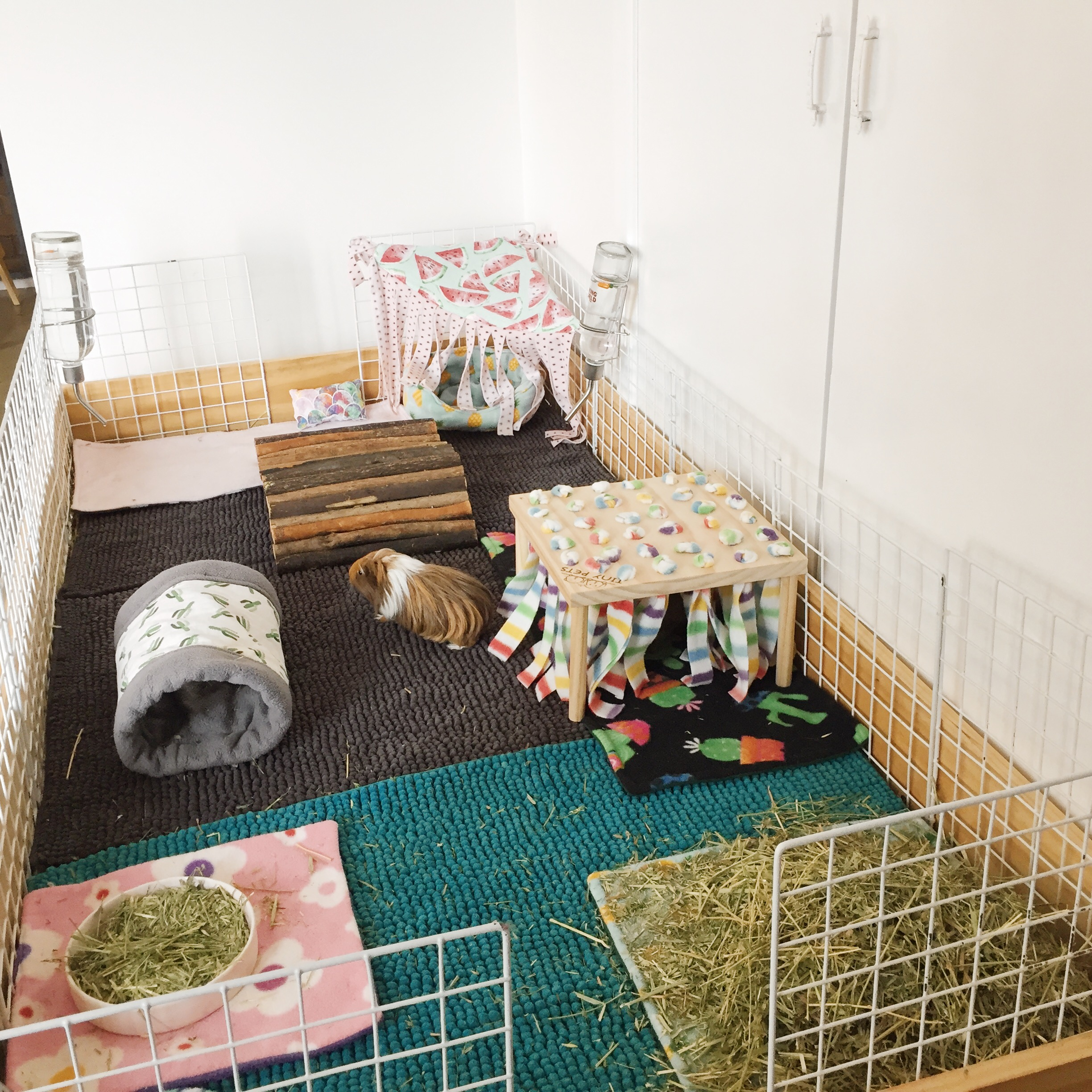Olive and Ziggys guinea pig cage is handmade from plywood and a large wooden base. On the inside of the cage are three bath mats as liners, a wooden tunnel, a wooden hidey hut, some fleece cosy items and two large piles of hay and two water bottles.